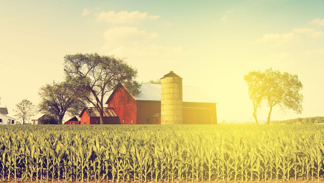 Farm Insurance: What should be included in your Farm Insurance Quote?